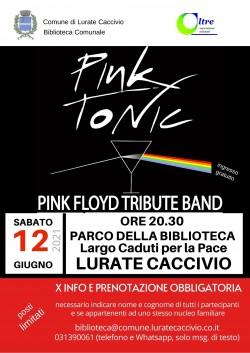 Pink Tonic - tributo ai Pink Floyd